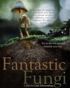 Helping to Fund Fantastic Fungi Film on Kickstarter